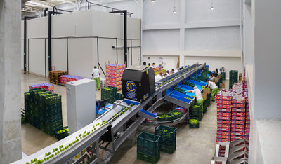 Valle Verde's state-of-the-art lime packing and cold storage facility
