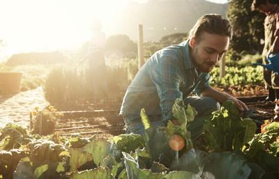 Univar Solutions Named Solvay's Agrochemical Market Distributor in Brazil